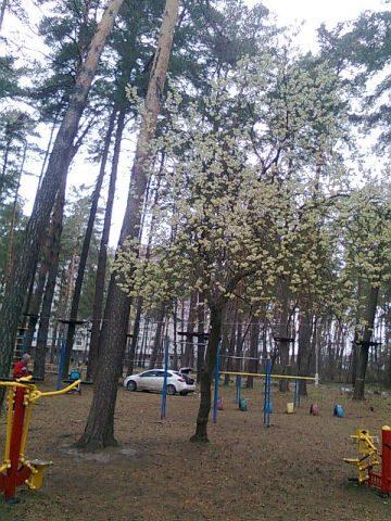 Весна,апрель.