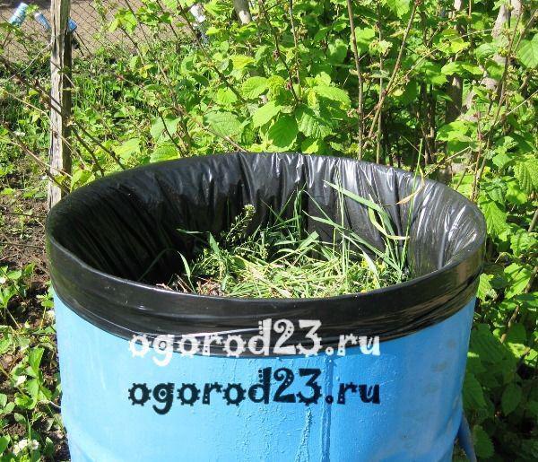 органическое зеленое удобрение своими руками