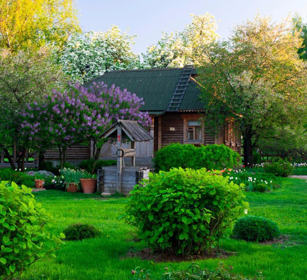 красивые сады дачников подмосковья фото изменами