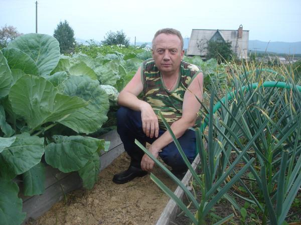 Удивительные урожайные грядки Игоря Лядова DSC00027 (600x450, 93Kb)