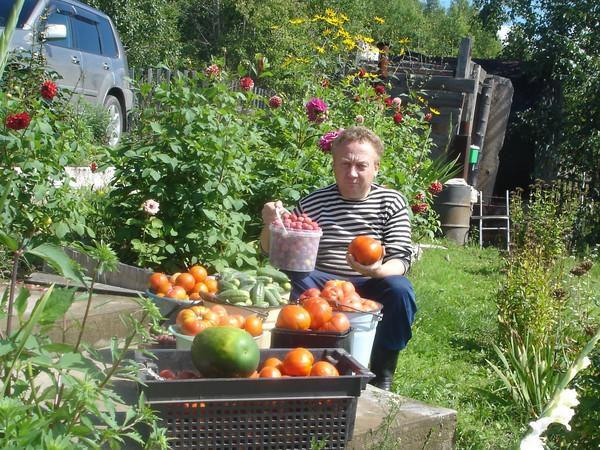 Удивительные урожайные грядки Игоря Лядова