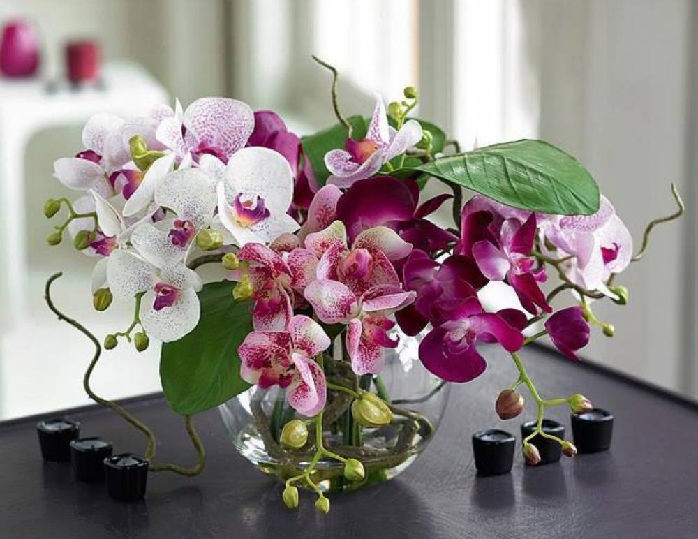 Открытка с орхидеями с днем рождения