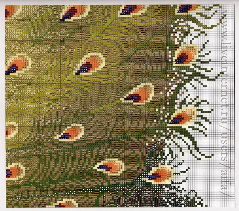 Павлин - схема вышивки