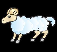 Цветок талисман овен
