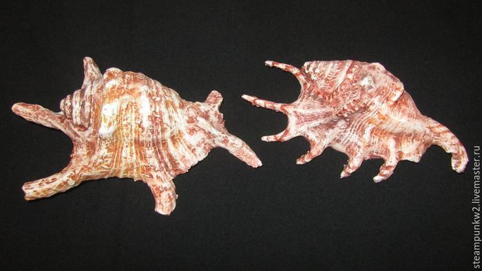 Морские раковины из папье-маше