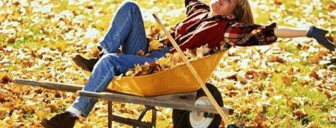 Осенние работы в саду: как подготовить свой огород к зимним холодам?
